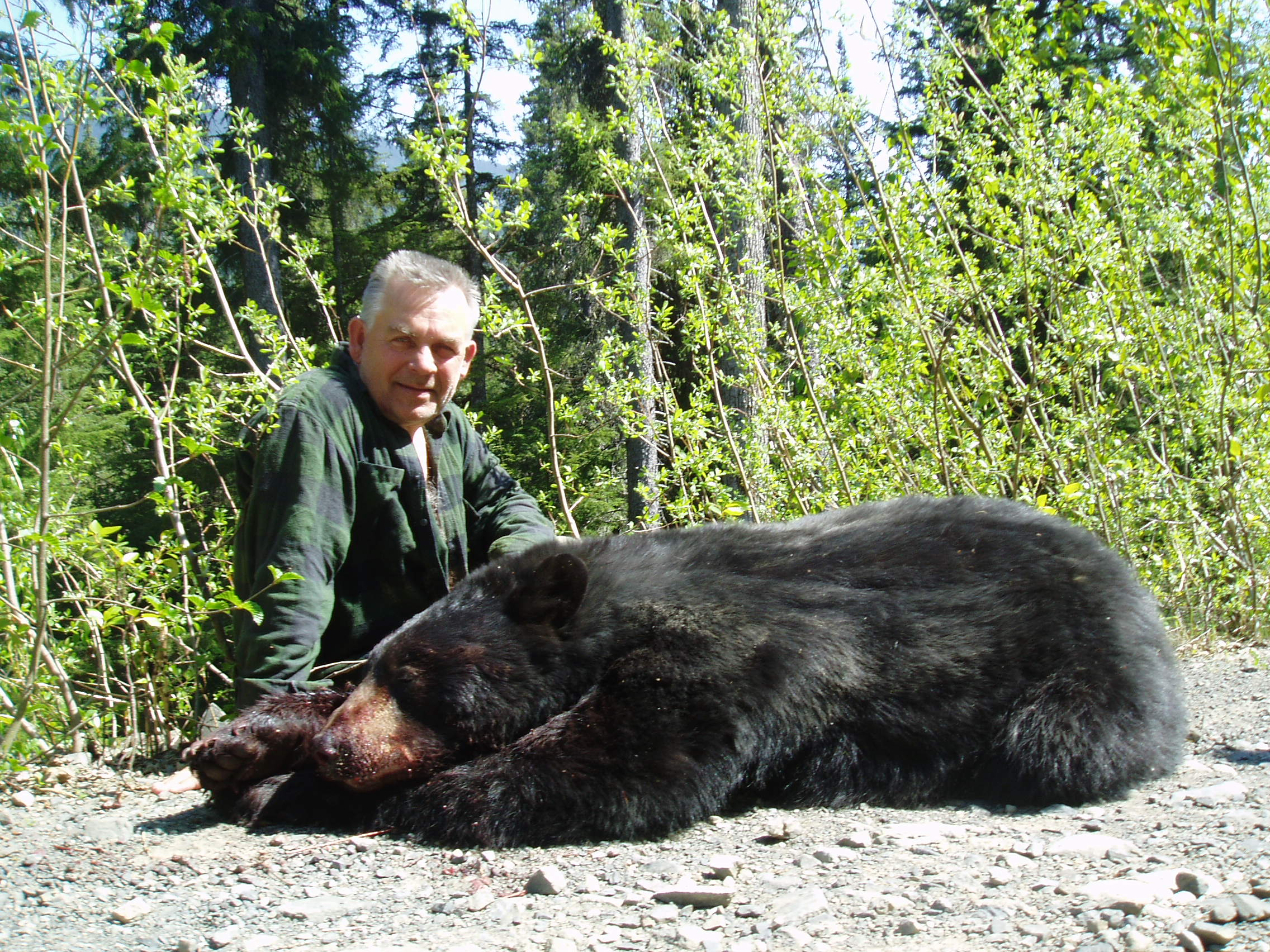 Spring bear hunts