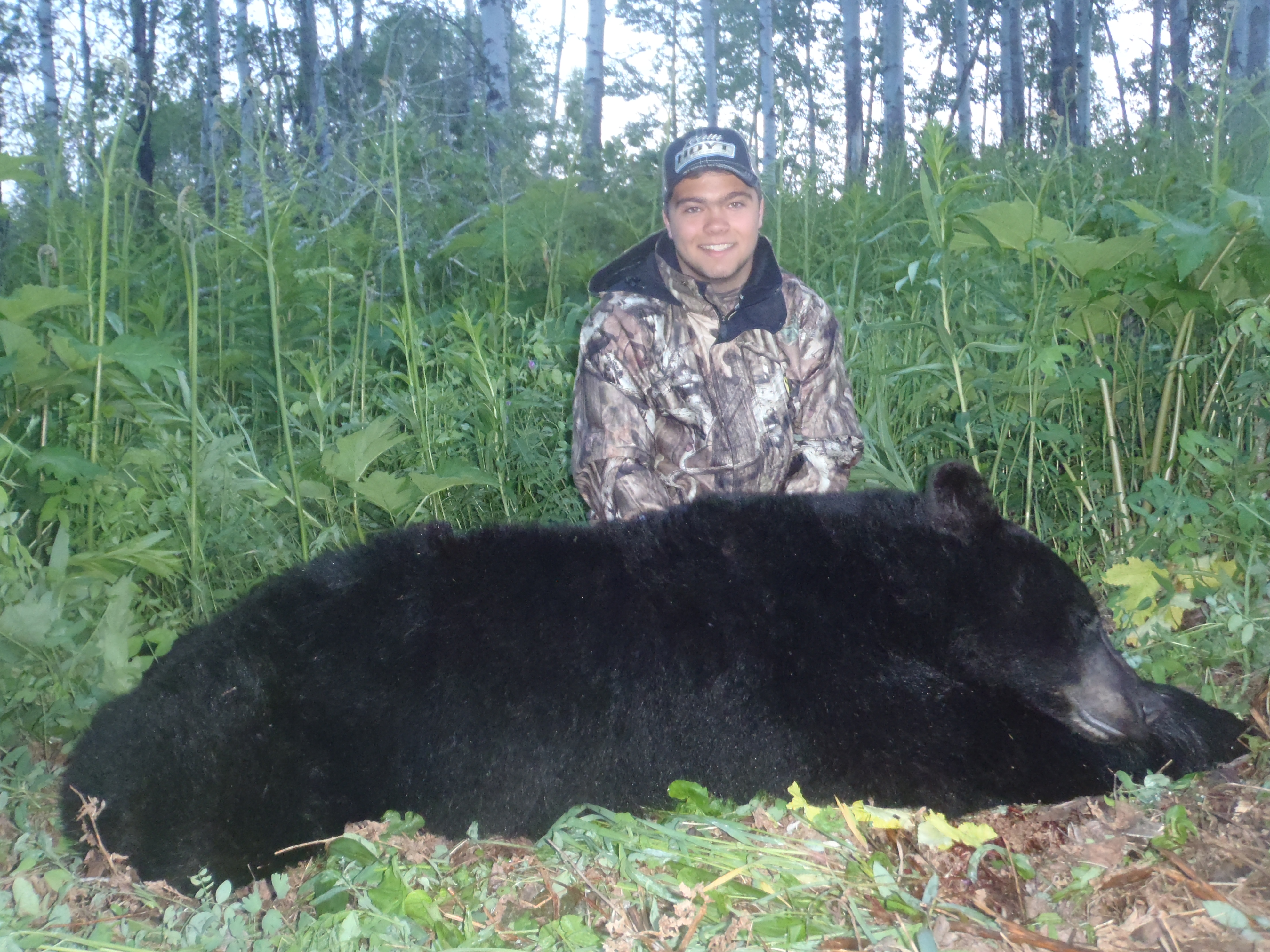 Black Bear Hunts