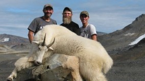 BackPack Mountain Goat Hunt