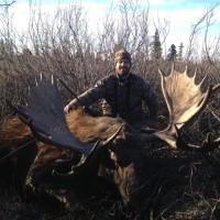 BC moose hunt